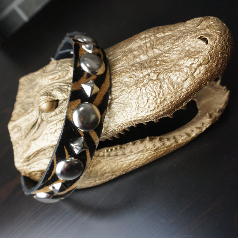 custom zebra print studded dog collar on alligator