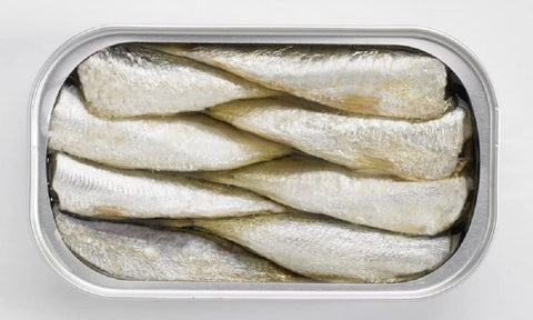 Small Sardines by Paco Lafuente