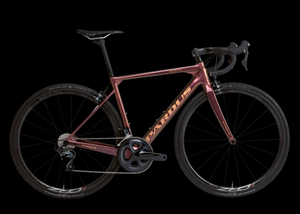 Pardus ROBIN SL-Carbon road bike.