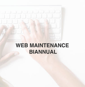 WEB MAINTENANCE | BIANNUAL