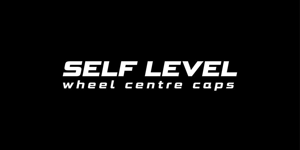 Self Level - Logo