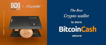 The Best Crypto Wallet To Store bitcoin cash Secure, FuzeW