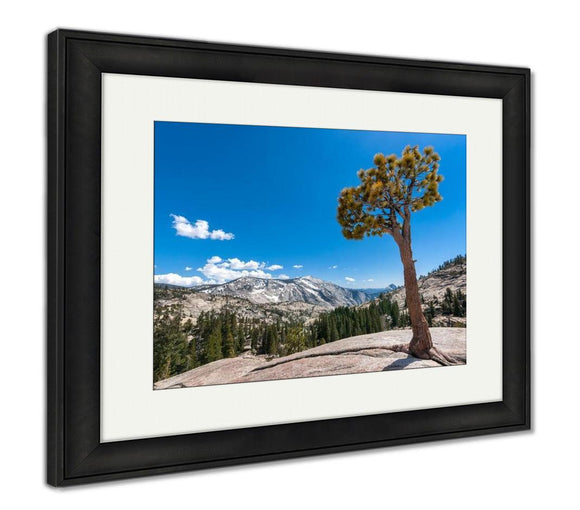 Framed Print, Olmsted Point Yosemite - Framed Print - Payabee Home Goods