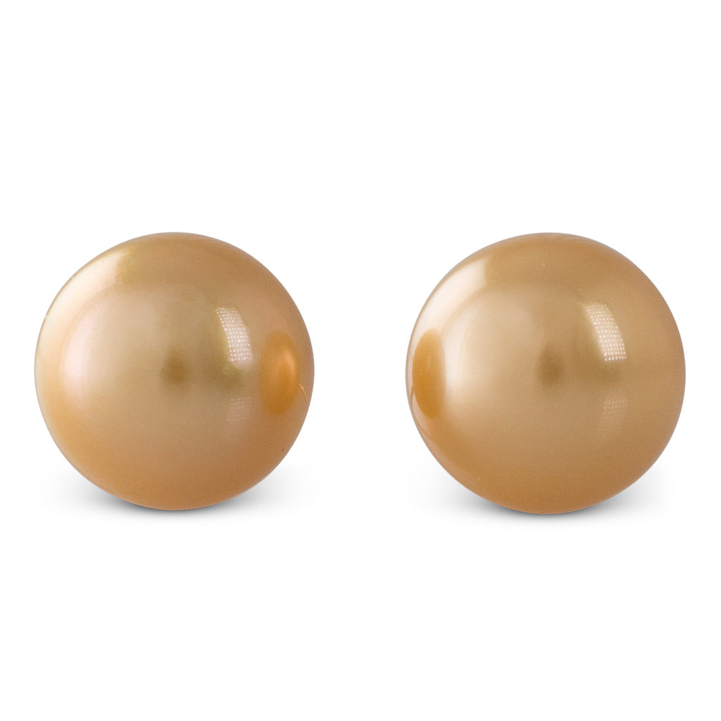 Gold South Sea Pearl Studs