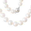 Semi-Round South Sea Pearl Strand