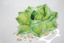 Load image into Gallery viewer, Quilling Card Succulent