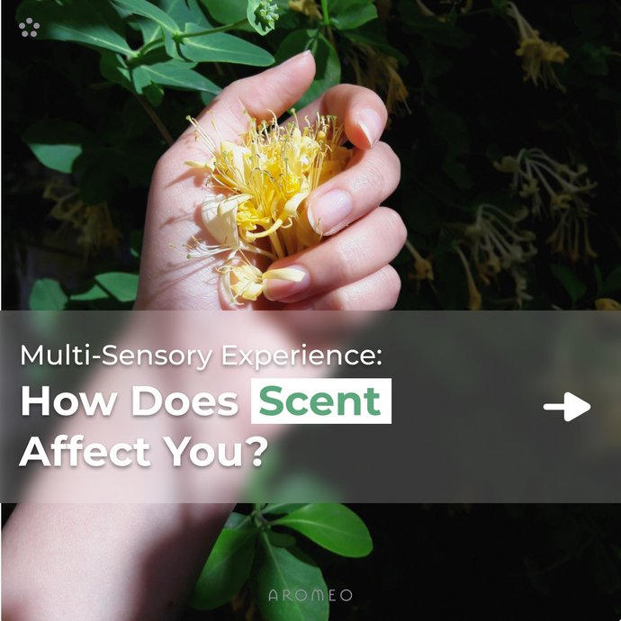 How Does Scent Affect You?