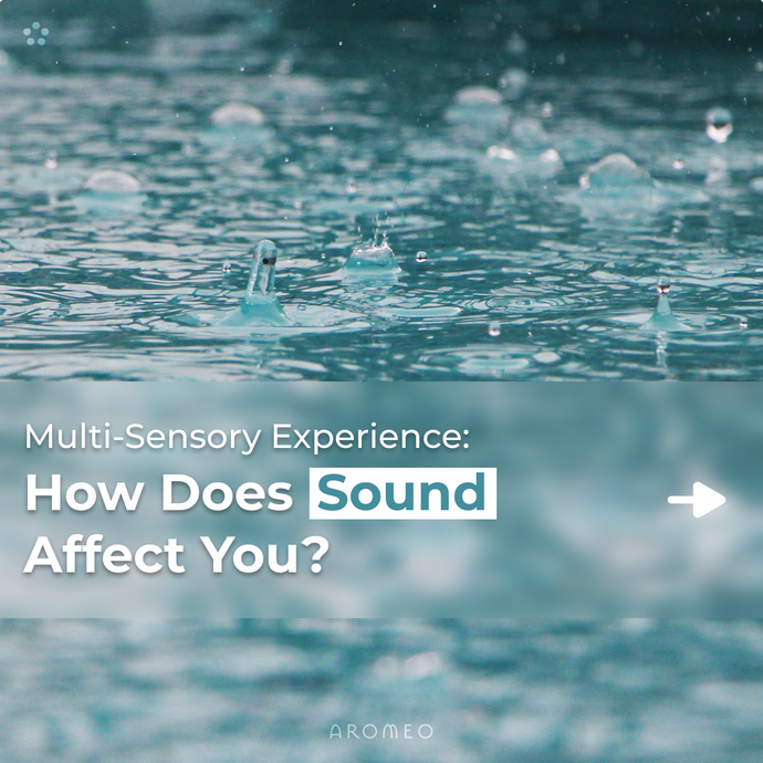 How Does Sound Affect You?