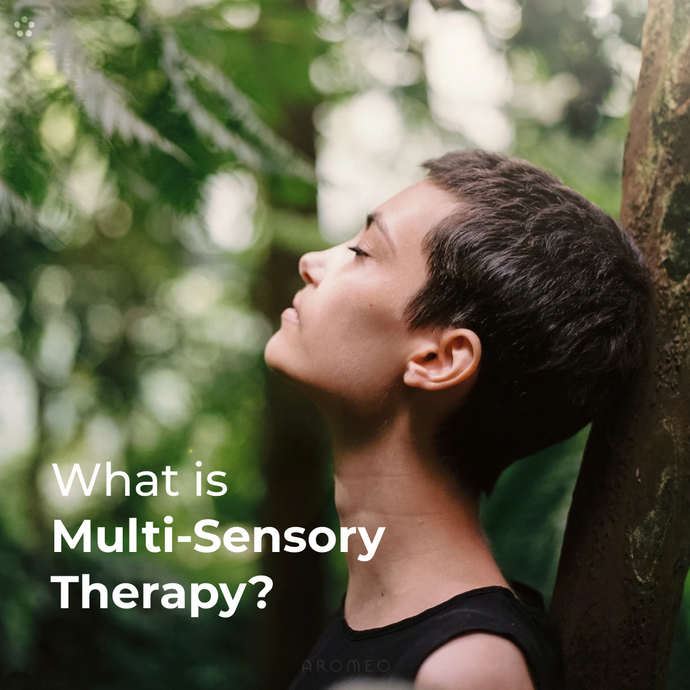 What is Multi-Sensory Therapy