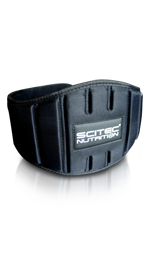 SciTec Nutrition Training Belt - gymstop