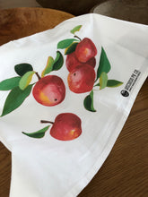 Load image into Gallery viewer, Classic Tea Towel - 5 Apples