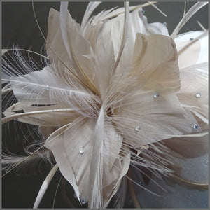 Nude Floral Feather Special Occasion Headpiece