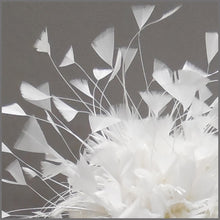 Load image into Gallery viewer, Bridal Wedding Feather Fascinator with Veil in White
