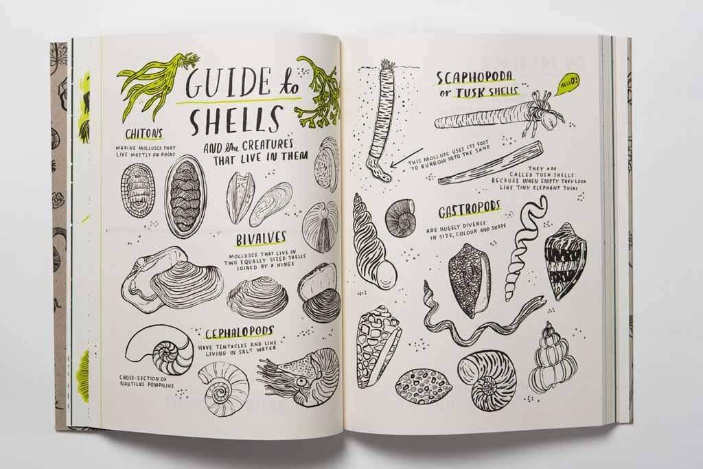 Laurence King Publishing Kids Activities Hello Nature: Draw, Colour, Make and Grow-Nina Chakrabarti