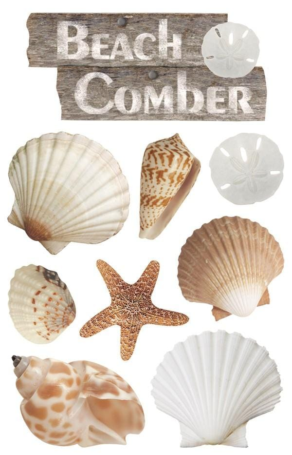 beach comber 3d sticker