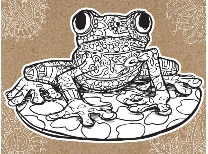 frog diecut coloring cut