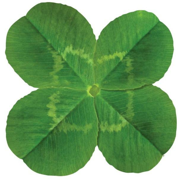 four leaf clover diecut card