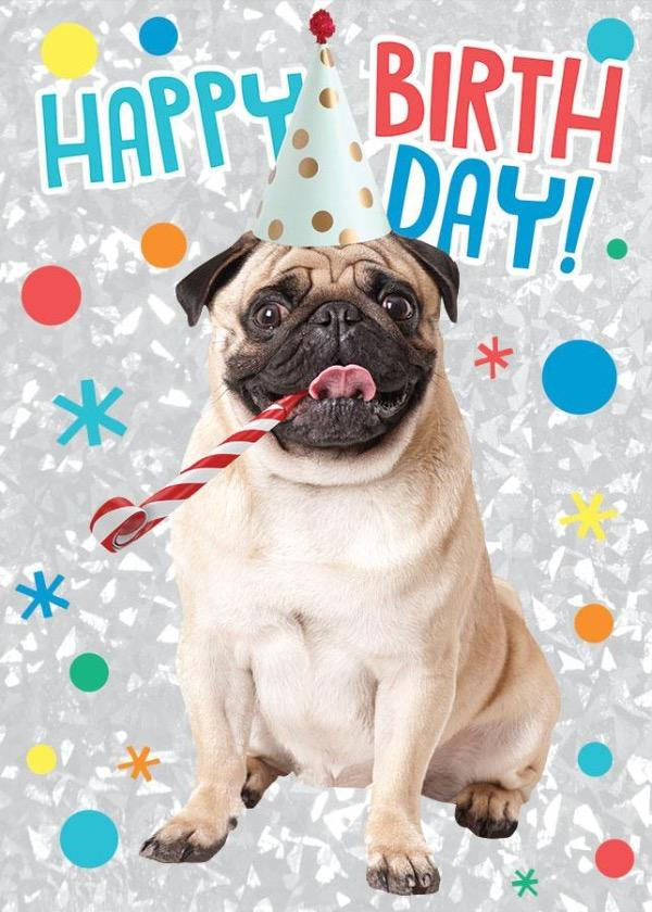 Birthday Pug Foil Card