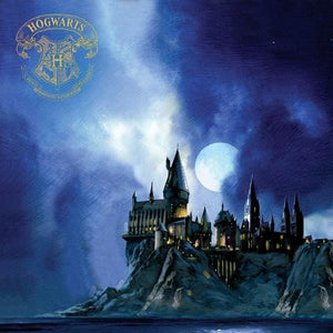 Harry Potter™ Hogwarts at Night Foil Paper