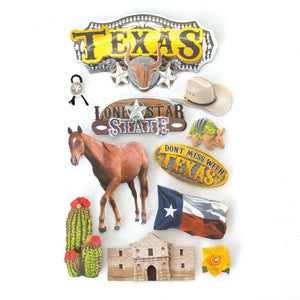 Texas 3D Sticker