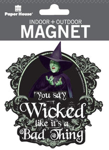 Wizard of Oz™ Wicked Witch Indoor + Outdoor Magnet