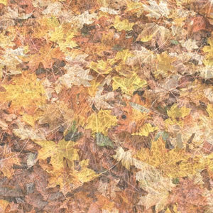 "Fall Foliage 12"" Scrapbook Paper"