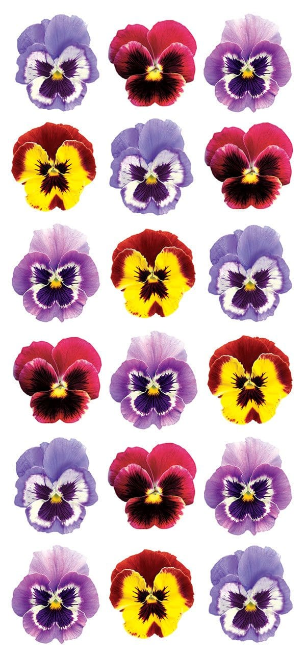 Pansies Puffy Sticker