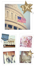 Load image into Gallery viewer, Washington DC Snapshot Sticker
