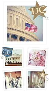 Washington DC Snapshot Sticker