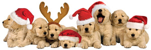 Christmas Puppies 3D Title sticker