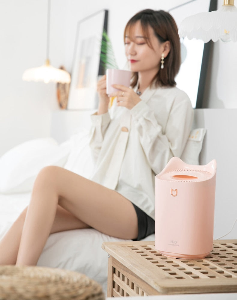 Home Air Humidifier Double Nozzle Cool Mist Aroma Diffuser with Coloful LED light - systematicshop.com