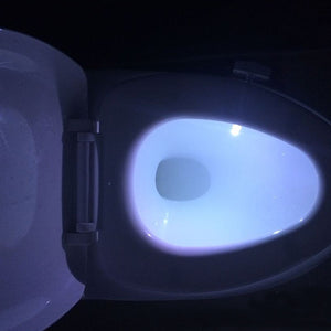 Smart Bathroom Toilet Nightlight LED Body Motion Sensor Lamp