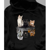 Gift for cat lover - Cat outside but lion inside hoodie for cats lover - GST