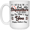 Out Of All The Evil Stepmothers In The World I'm So Glad I Got You Mug