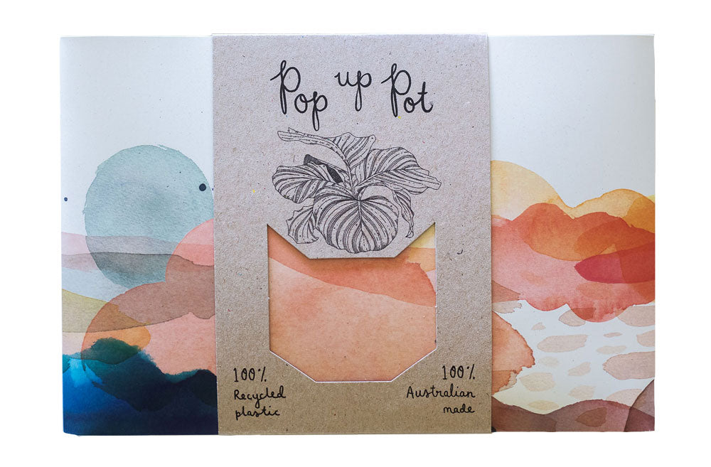 Beach Pop Up Pot