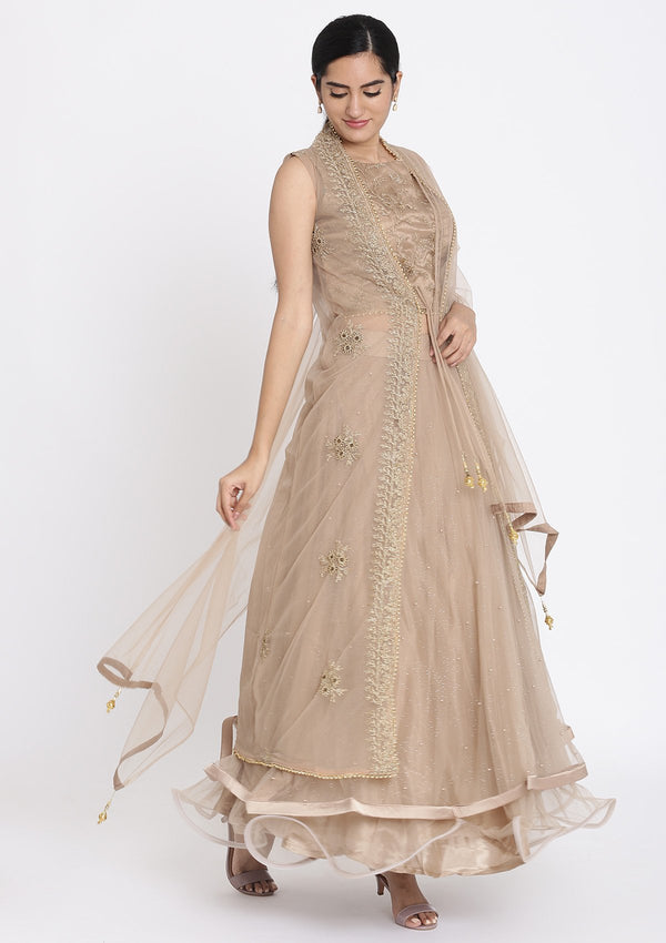 Light-Brown Zariwork Net Designer Lehenga
