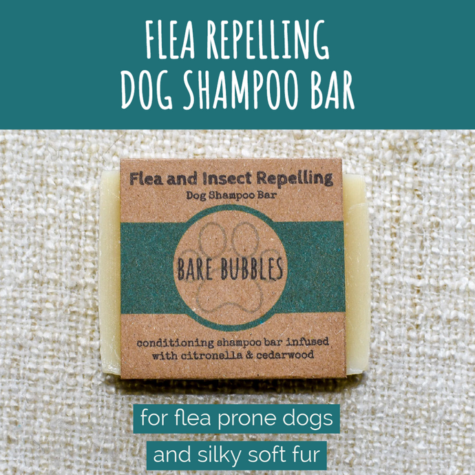 Dog Shampoo Bar: Flea Repelling