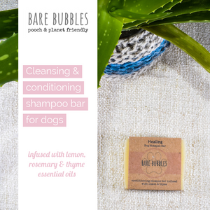 Dog Shampoo Bar: Healing