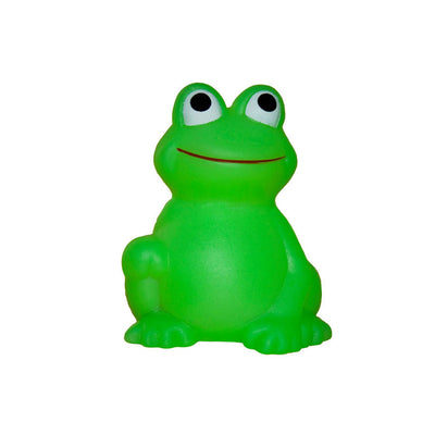 Froggy Bath Toy