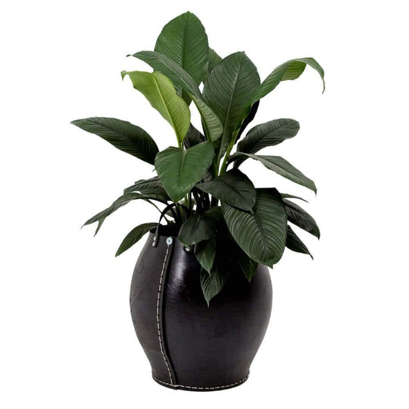 Rubber Planters with Handles - Upcycle Studio