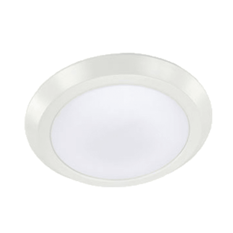 Flush Mount Ceiling Light