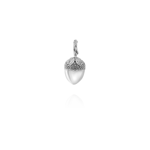 Sterling silver acorn design neckalce pendant, meaning potential, from Evolve Inspired Jewellery