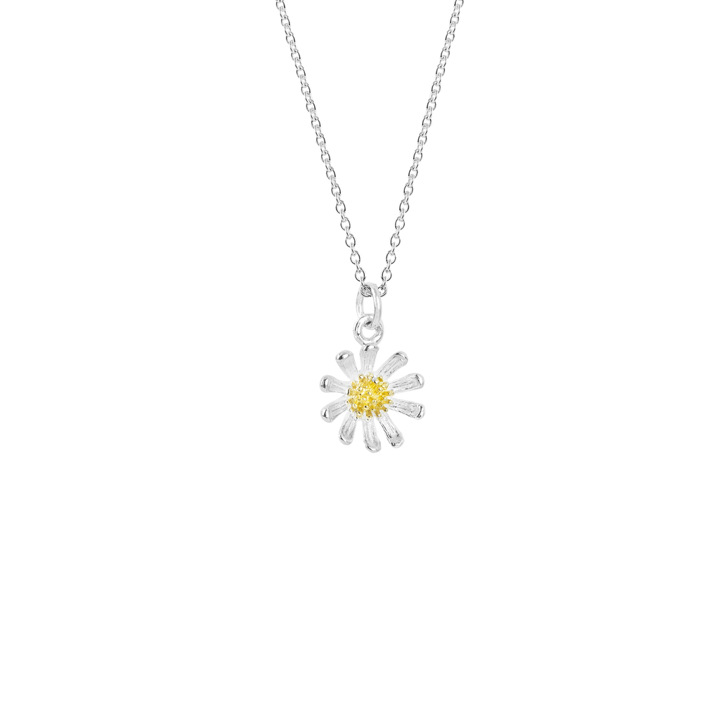 Wild Daisy Necklace, silver and gold necklace meaning friendship from Evolve Inspired Jewellery