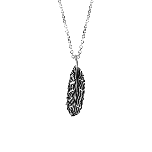 Oxidised sterling silver necklace featuring a huia feather design, from Evolve Inspired Jewellery