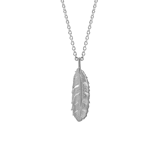 Polished sterling silver necklace featuring a huia feather design, from Evolve Inspired Jewellery