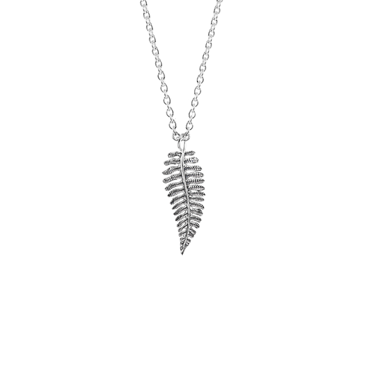 Sterling silver nz fern design necklace, meaning treasured, from Evolve Inspired Jewellery