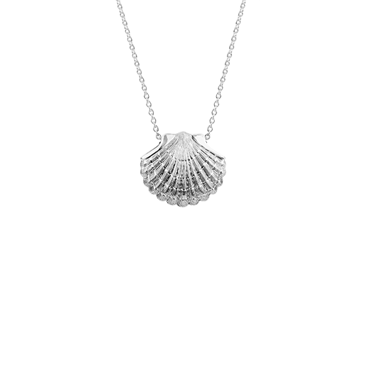 Sterling silver scallop design necklace, meaning direction, from Evolve Inspired Jewellery