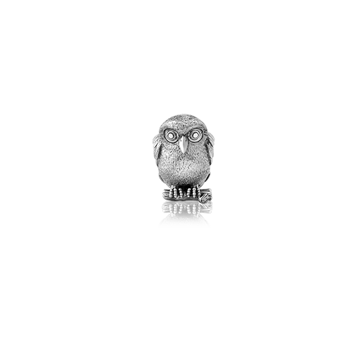 Ruru, silver owl bead charm meaning morepork from Evolve Inspired Jewellery