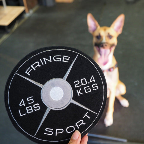 Weight Plate Dog Chew Toy