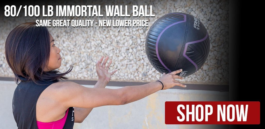 Immortal Wall Ball by Fringe Sport 80 & 100 Pounds On Sale